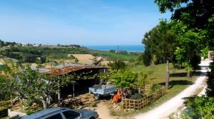 terreno agricolo in vendita a Potenza Picena frazione casette antonelli agenzia immobiliare parigi snc 05