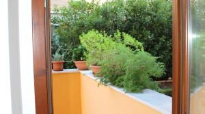 Vendita appartamento bilocale con corte e cantina porto sant'elpidio fermo agenzia immobiliare parigi di cruciani stefano 10